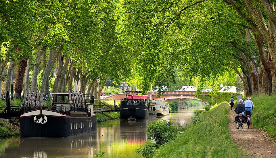 canal du midi sous les platanes